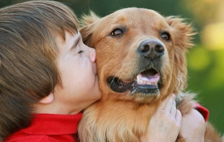 Boy in red sweater kissing a Golden Retriever